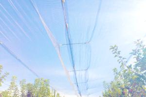 malla antigranizo, malla antipiedra, anti-hail net, anti hagelnetten, rete antigrandine, leno fabric