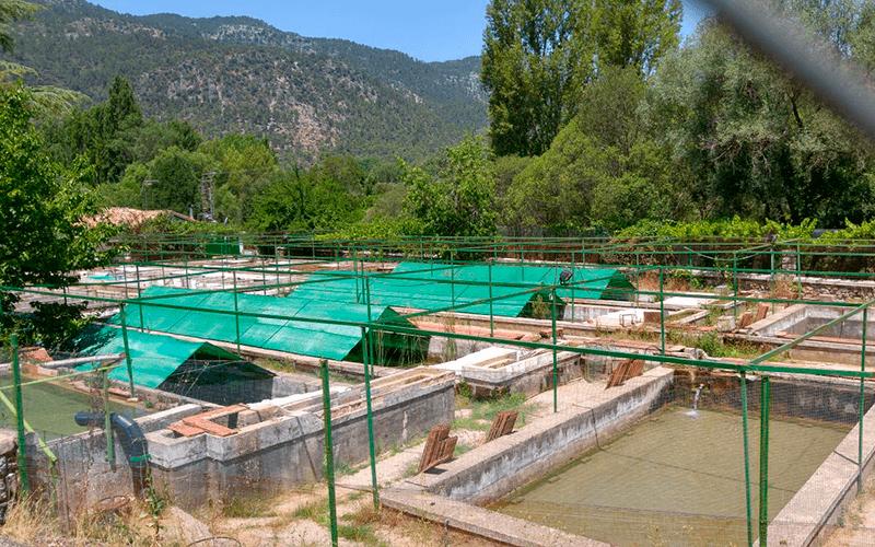 Malla acuicultura, malla de siembre, malla de protección de moluscos, cría de caracoles, piscifactoría