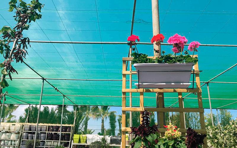 malla gardening