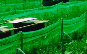 malla caracoles,mallas granjas de caracoles, helitex, malla antifuga, malla dos volantes, filet anti fuite escargots, rete per lumache, rete per allevamento lumache