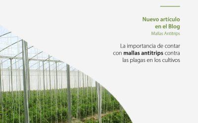 La importancia de la malla antitrips en la horticultura. Aspectos técnicos
