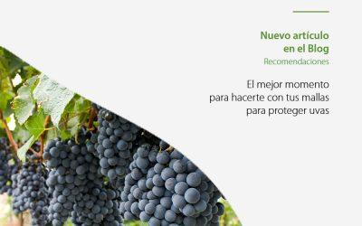 Deja de preocuparte por la salud de tus viñedos con nuestra malla para proteger uvas
